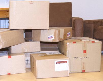 Zoll Paket-Kontrolle